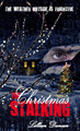 TheChristmasStalking_h11248_120A